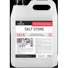 161 Salt Stone Моющий концентрат против высолов на фасадах