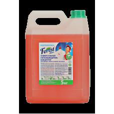Универсальный пятновыводитель Forest Clean